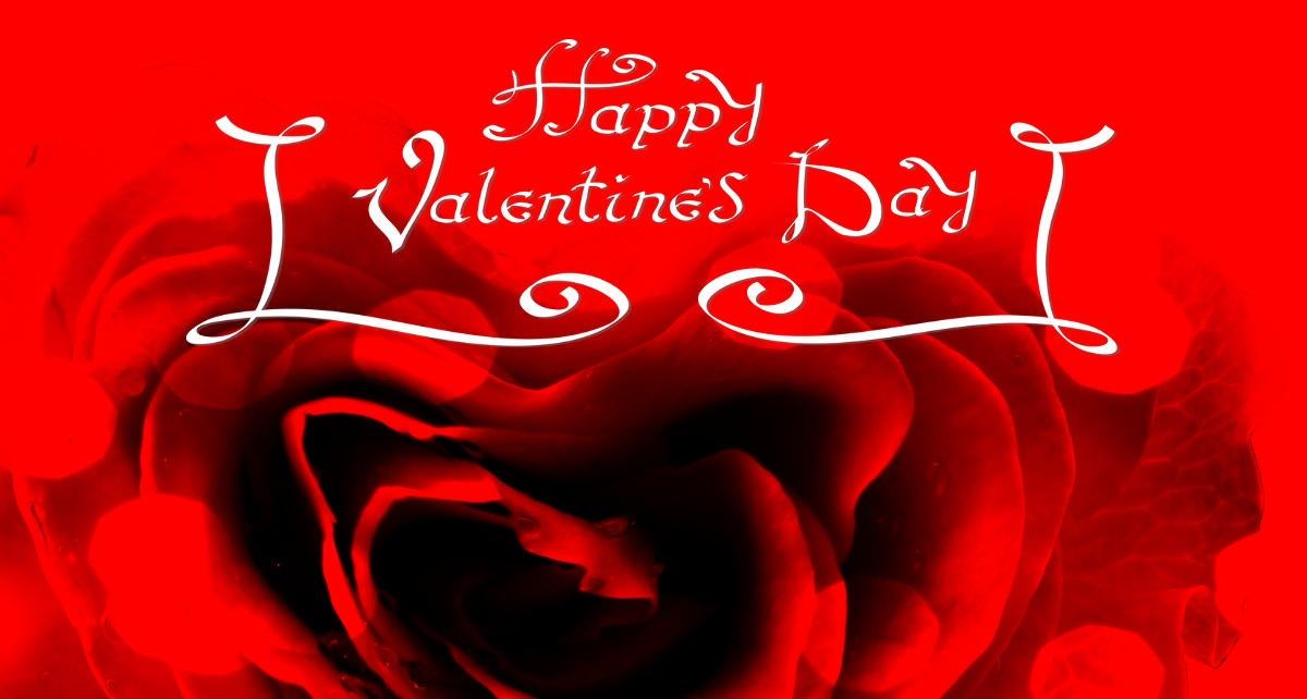 When is Rose Day 2020 | Valentine Rose Day | Rose day Special Valentine day